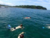 Snorkelen & dolfijnen spotten
