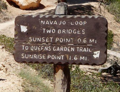 Verenigde-Staten-Bryce-Canyon-5_1_548979