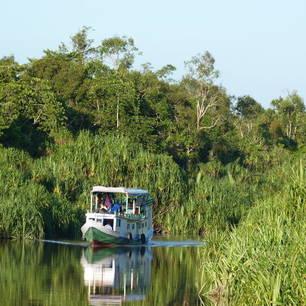 Kalimantan-Tanjung Puting NP-Klotok3(8)