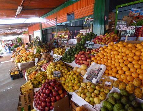 Lokale-markt-groente-en-fruit