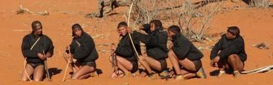 5 excursietips in Namibië