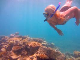 Bucketlist: Great Barrier Reef