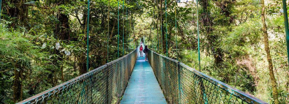 Monteverde-8-hanging-bridge_mini_1_390100