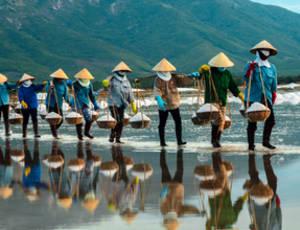 Vietnam-VanVerre2