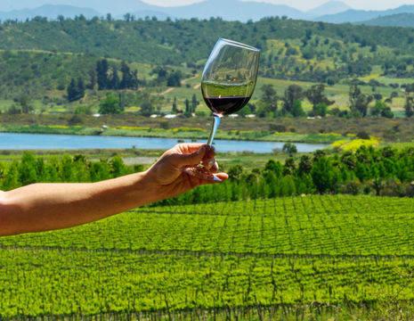 Chili-Casablanca-Valley-wijnglas-nabij-Santiago-de-Chile_1_398741
