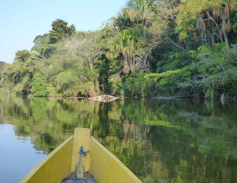Varen door de jungle van Madidi National Park - Bolivia