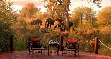 Zuid-Afrika-Krugerpark-Safari-Lodge