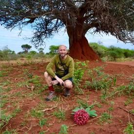 Mooie natuur in Afrika