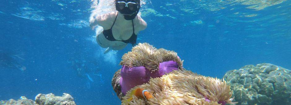 indonesie-sulawesi-bira-onderwaterwereld