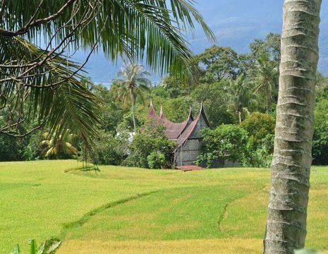 Indonesie-Sumatra-bukittinggi-huis-sawah1