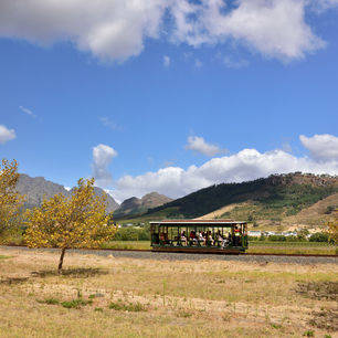 Zuid-Afrika-Franschhoek-Winetram1