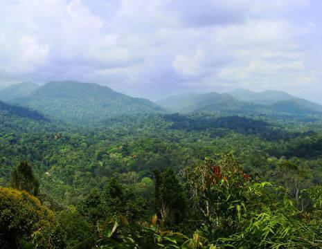 TamanNegara-landschap