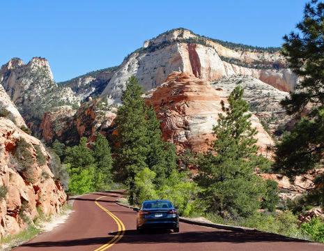 Amerika-Zion-Canyon-Scenic-drive-2(8)