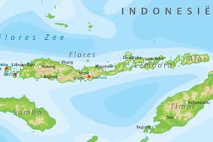 De kaart van Flores