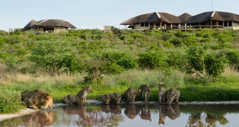 Botswana-Kalahari-Wildreservaat3