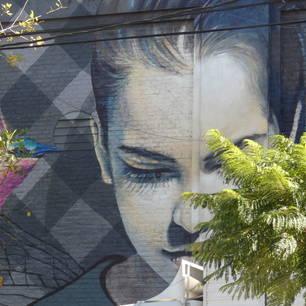 Argentinie-Buenos-Aires-streetart