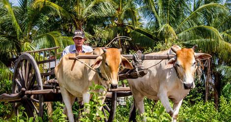 Siem-Reap-Victoria-Angkor-Resort(2)