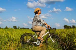 Fietsen door de rijstvelden in Vietnam