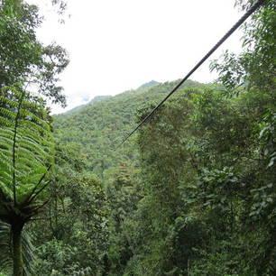 Vlieg tussen de boomtoppen in de Tarabita in Mindo