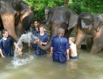 Elephant Care Center