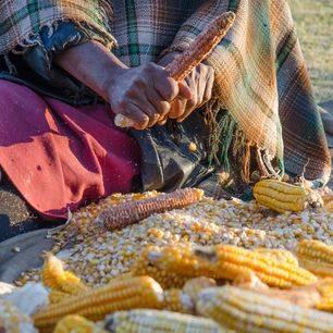 Lesotho-Malealea-braai-1