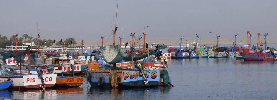 Stap-op-de-boot-in-de-haven-van-Paracas(11)