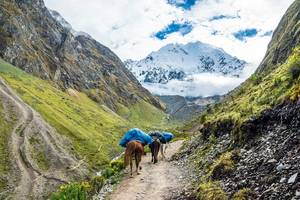 Salkantay-Trail-4