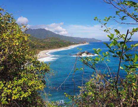 Colombia-TayronaNP-jungle-strand