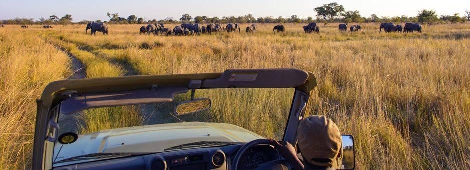 Namibie-CapriviStrook-Namushasha-RiverLodge_3_308792