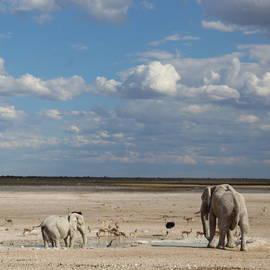 Landschap Namibië