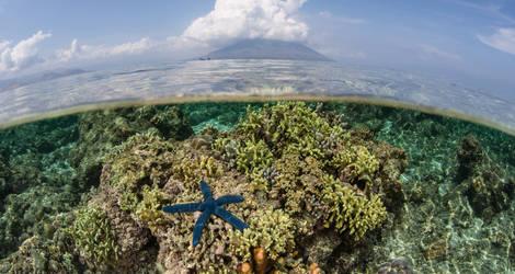 Indonesie-kleinesunda-eilanden-alor