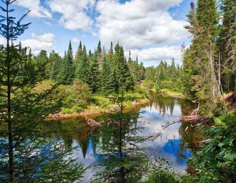 Canada-Algonquin-Provincial-Park-1_1_495272