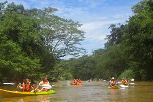 Kuching, Kajakken door de jungle