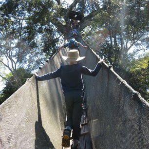 TambopataJungle-klimmen_1_416892
