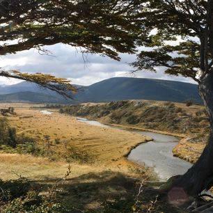 Chili-Isla-Navarino-Natuur