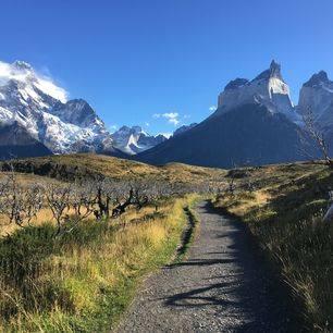 Chili-Torres-del-Paine-NP-wandelpad_1_429090