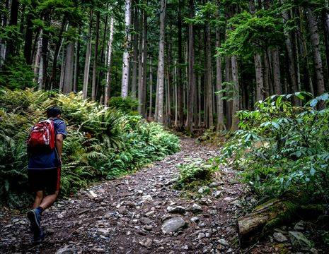 Canada-Vancouver-Grouse-Mountain-1