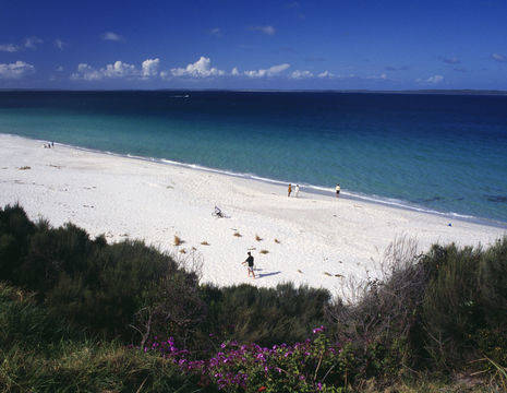 Australie-Jervis-Bay-Hyams-Beach