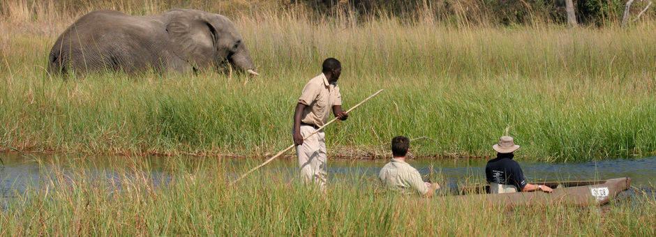 Botswana-Moremi-Wildlife-Reserve13