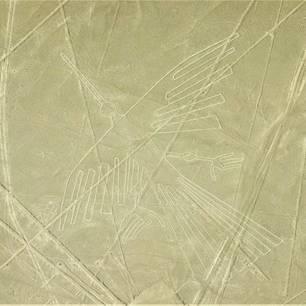 Nazcalijnen-vanuit-de-lucht-bewonderen(10)