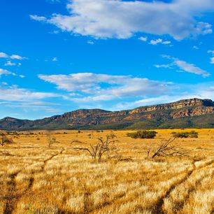Australie-Flinders-Ranges-oeroude-landschap_1_560461