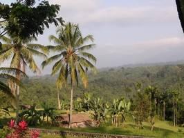Ijen Resort & Villas