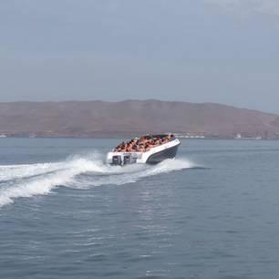 Stap-op-de-boot-naar-Islas-Ballestas(10)