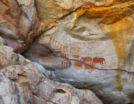 Bijzondere rotsschilderingen in de omgeving van Cederbergen in Zuid-Afrika