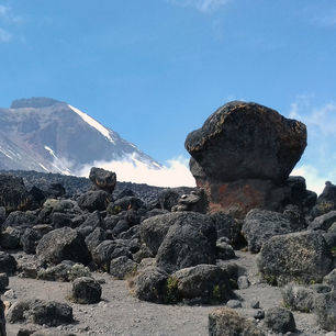 Kilimanjaro-Omgeving_1_423296